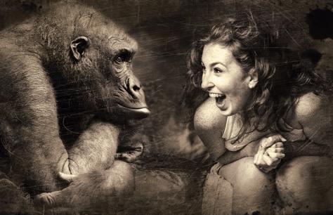 donna e gorilla