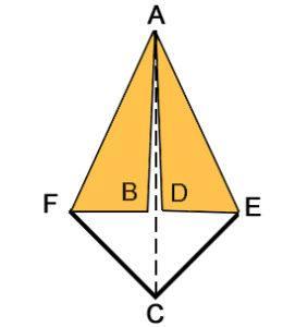 forma base F