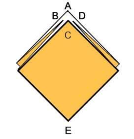 forma base D