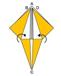 forma base-D1