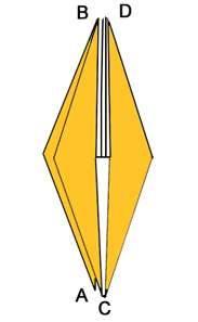 forma base D1