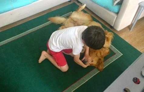 bimbo con cane