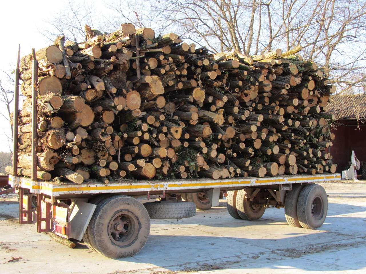 La legnaia di wolfcraft per accatastare la legna bricoliamo for Giunzioni legno wolfcraft