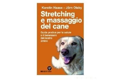 massaggio cane