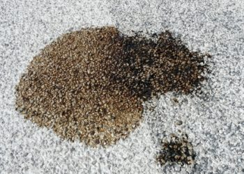 Unto sul cemento