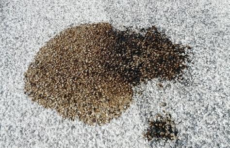 Come pulire l'olio dal pavimento - 6 passi