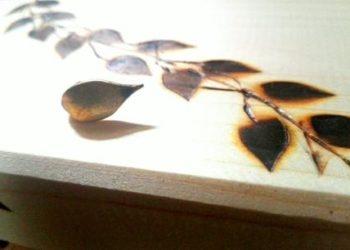 foglie pirografo