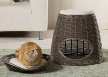 cuccia per cani e gatti