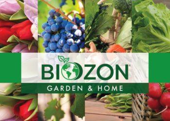 Biozon