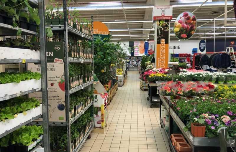 reparto giardino al supermercato