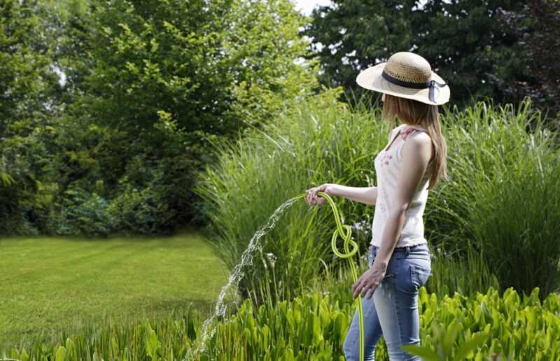innaffiare il giardino e il prato