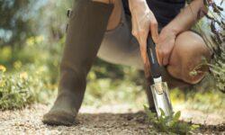 estirpatore per eliminare le erbacce