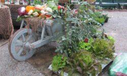 carriola con frutti e ortaggi