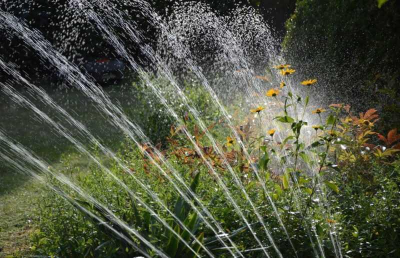 irrigare correttamente il giardino