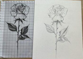 disegnare con la griglia