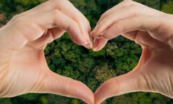 cuore fatto con le dita