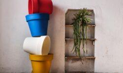 vasi multicolor