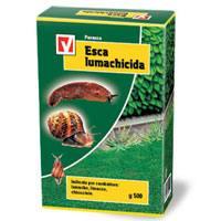 Lotta alle lumache come proteggere le piante bricoliamo - Lotta alle talpe in giardino ...