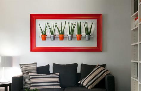 Arredare con le piante e decorare la casa bricoliamo for Piani di casa con la stanza del cane